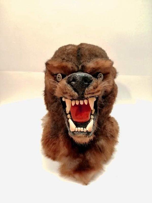 Maschera lupo personalizzata su…