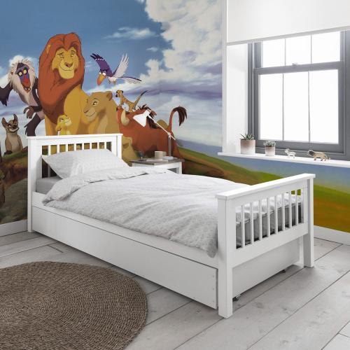 stanza re leone